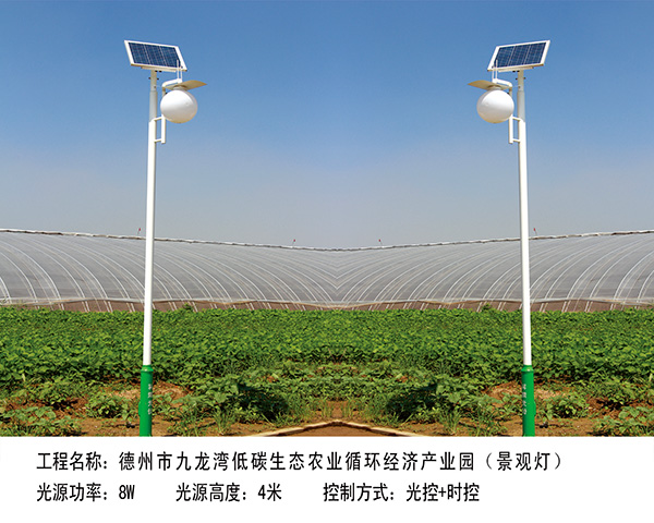 ballbet贝博网站市 九龙湾大棚景观灯3.5M