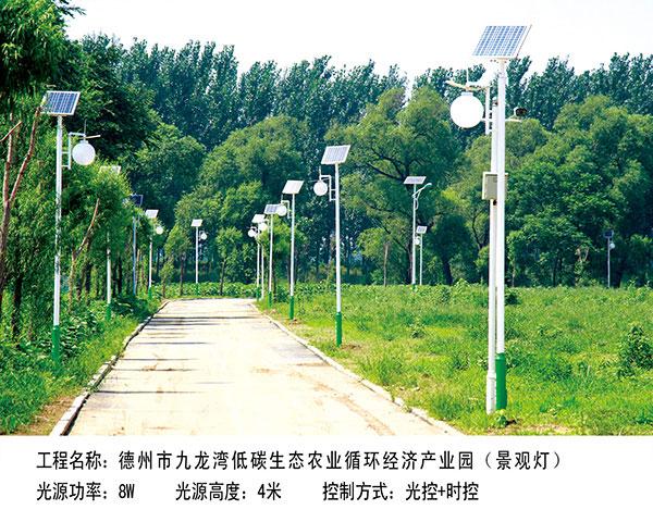 ballbet贝博网站市九龙湾  景观灯3.5M