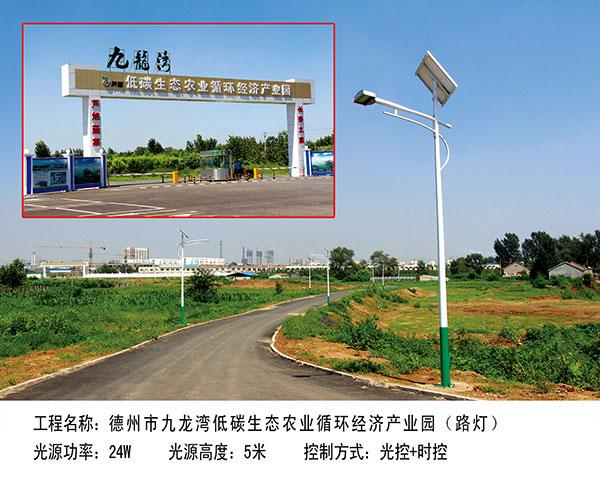 ballbet贝博网站市九龙湾  路灯5m